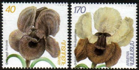 "<font 1-127>127-8, Flowers of Armenia Scott #562-3<p> <a href=""/shop/catalog/images/ArmenianStamps-127-128.jpg"">   <font color=green><b>View the image</b></a></font>"