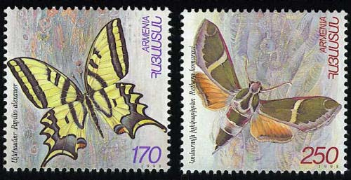 <font 1-144>144-5, Butterflies of Armenia Scott #579-80<p> <a href=&quot;/shop/catalog/images/ArmenianStamps-144-145.jpg&quot;>   <font color=green><b>View the image</b></a></font>