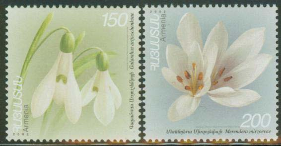 "<font 1-278a>278-9, Medical plants and flowers, 2nd issue, Scott #666-7. <p> <a href=""/shop/catalog/images/ArmenianStamps-278-279.jpg"">   <font color=green><b>View the image</b></a></font>"