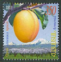 "<font 1-407a>407, Armenian Apricot issued by HayPost, Scott #751    <p> <a href=""/shop/catalog/images/ArmenianStamps-407.jpg"">   <font color=green><b>View the image</b></a></font>"
