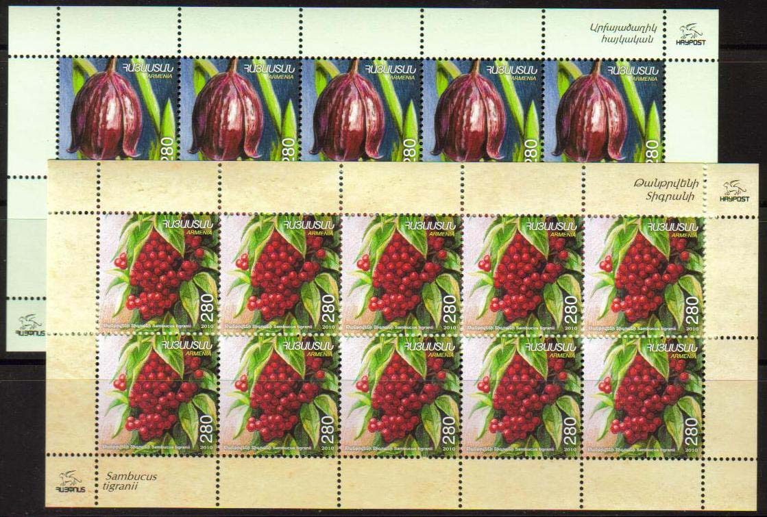 "<font =4-19s>518-9, Fruits of Armenia,  Scott #--- <br>Sheetlets of 10 <br>Date of Issue: Feb. 2, 2011<br> <a href=""/images/ArmenianStamps-518-519-Sheets.jpg"">   <font color=green><b>View the image</b></a></font>"