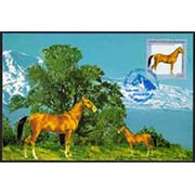 "<font 5-039>Nagorno Karabakh #39, Karabakh Horse, joint issue with Armenia<br> Maxi Card<br><a href=""/images/KA-39-maxi.jpg"">   <font color=green><b>View the image</b></a></font>"