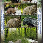 "<Font 3-088C>Nagorno Karabakh #88-90, 2013 issue, Flora and Fauna of Artsakh, Combination sheet of 6 stamps (2 sets)<br><a href=""/images/KA-88-90-BL2.jpg"">   <font color=green><b>View the image</b></a></font>"
